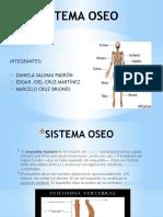 Sistema Oseo. BLOQUE 6, BIOLOGIA 2