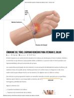 Síndrome del túnel carpiano remedios para atenuar el dolor - Denerus.pdf