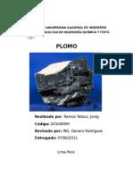 57488420-PLOMO.docx