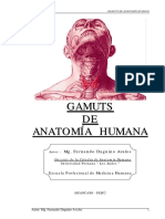 Gamuts anatomia humana.pdf