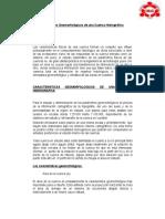 primer trabajo Geomorfologia de cuenca.docx