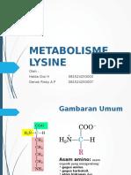 Metabolisme Lysine 2