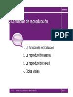 PP-07 [Modo de Compatibilidad]