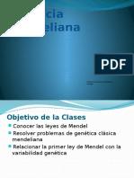 Ppt 7 Herencia Mendeliana