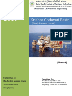 assignment KG Basin.pdf