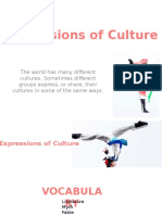 Expressions of Culture