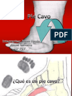 diseracionpiecavofinal-091021201133-phpapp02