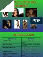 3. La Evolucion Del Hombre