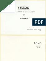 Fichas 1