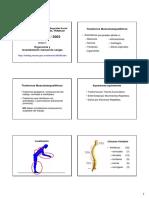 Sem_2_tema_2_Antropometría_estática_y_antropometría_dinámica__(PDF).pdf