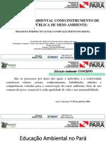 A EDUCAÇÃO AMBIENTAL COMO INSTRUMENTO DE GESTÃO PÚBLICA DE MEIO AMBIENTE.pdf