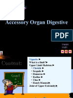 Anatomi - It 4 - Accessory Organ Digestive - Irw