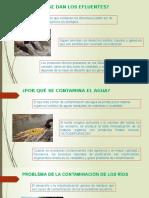 Problema de La Contaminación de Los Ríos