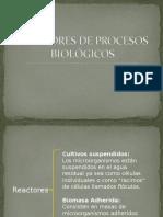 Reactores de Procesos Biológicos