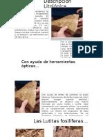 descripciones-litologicas
