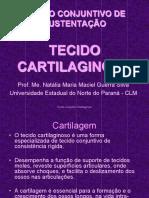 4. Tecido Cartilaginoso e O-sseo