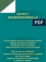 01.-Gateo y Neurodesarrollo