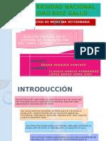 Toxicologia Veterinaria - Riesgos Toxicos