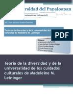 Teoria de La Diversidad - Madeleine M Leininger