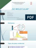Peso Molecular Polímeros