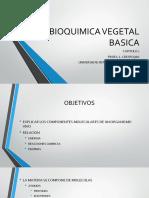 BIOQUIMICA VEGETAL BASICA.pdf