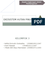Ekosistem Hutan Pinus Kel.3