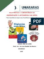 2ªaula Pratica Higienizacão Mãos