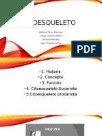 Citoesqueleto (1)