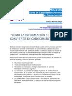 Como La Informacion Se Convierte en Conocimiento-monografia-neurociencias-martine.szejer