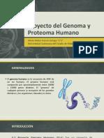 Proyecto Del Genoma y Proteoma Humano-Genética