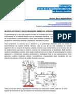 Neuroplasticidad y Redes Hebbianas- Bases Del Aprendizaje-monografia-neurociencias-gabriela.alasio