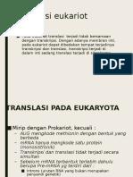 Translasi-eukariot