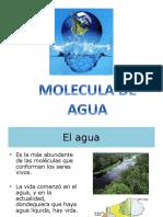 moleculadeagua-140210195834-phpapp01