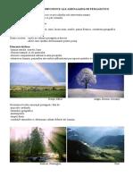 Curs 13- Elemente Componente Ale Amenajarilor Peisagistice -1