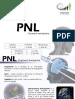 pnl estrategias