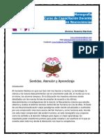 Sentidos Atencion y Aprendizaje Monografia Neurociencias Rosanna.martinez