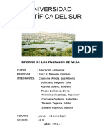 Pantanos de Villa, Lima, Perú