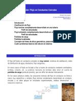 Tema_5._Flujo_a_presión.pdf