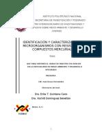 tesis de caracterizacion para resistencia de mercurio}.pdf