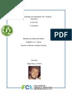 Método dos elementos finitos formulações matemáticas
