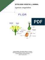 o-v-flor.pdf