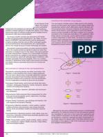 teoria piezoelétrica.pdf