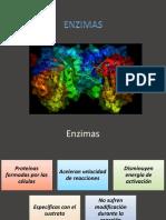 Enzimas Med