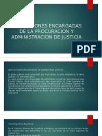 Instituciones Encargadas de La Procuracion y Administracion De