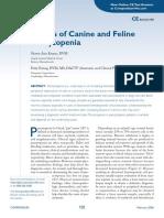 Causas de Pancitopenia Canina y Felina