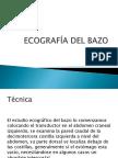 10e BAZO.pdf