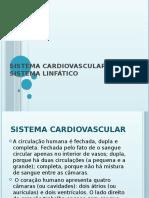 Sistema Cardiovascular e Sistema Linfático