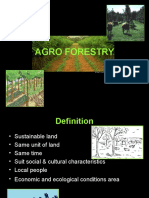 6.Agroforestry Social Forestry