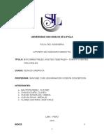 quimica-biocombustibles-MONOGRAFIA1.docx