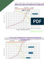 curvasdefriedman-111119113830-phpapp02